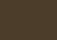 Logo Enjoy 1912-2012 bruin